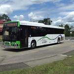Kangaroo Bus Lines Morayfield