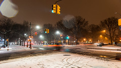 Late March Snowfall-10.jpg