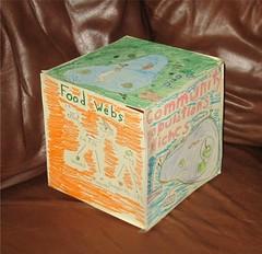 Eco Cube by Teckelcar