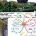 Permaculture practice by Salamander Springs Farm: Susana's Perma-organics