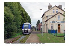 Auchy-les-Hesdin. Train from Arras to Calais arriving. 17.8.15