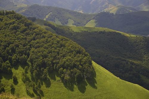 Entre Béhorléguy et le Col d'Apanice