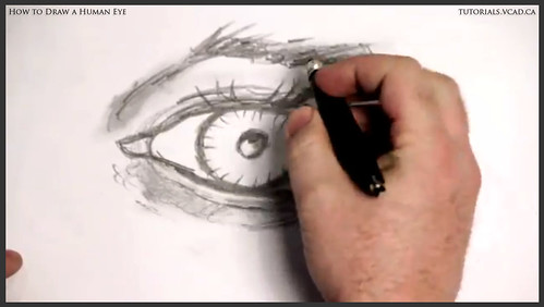 learn how to draw a human eye 019