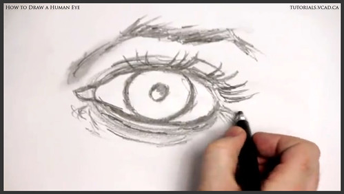 learn how to draw a human eye 016