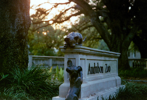sunset film colors grass statue neworleans hellyes iphotoshoppedapoleoutofthis