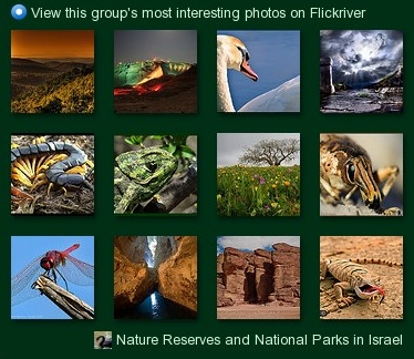 most_interesting_nature_reserve_group