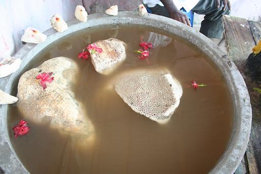 Floating Stones of Rameshwaram