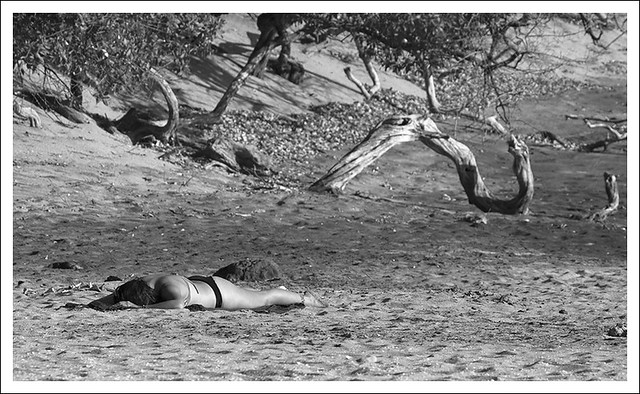 Langosta Beach 3