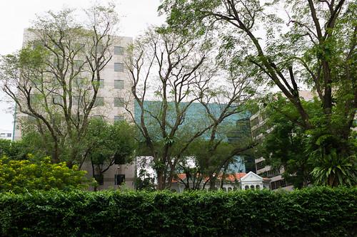 Walking along Orchard Road, Singapore