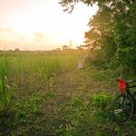 Bcycles-P1060375-web.jpg