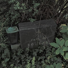 The Gravestone without a Grave - At Ants Brooklet