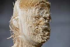 <strong>The Tainted - </strong> <br />Aron Demetz, Proposta KR150 (detail), limewood, 235 x 94 cm, 2012