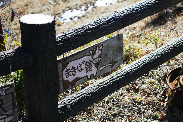 20130127_大野山_0047