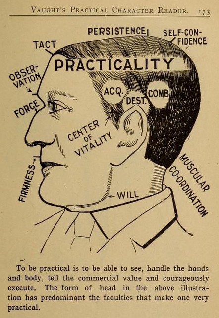 Phrenology Diagram