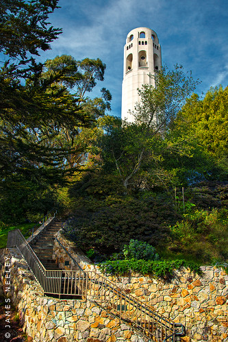 Climbing to Coit by James Neeley