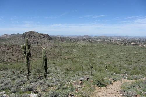 Arizona08