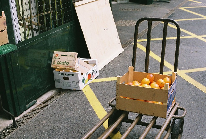 london V (vitamins)