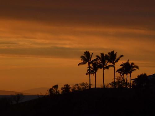 trees sunset orange color night island hawaii cloudy bigisland lanai kahoolawe kawaihae