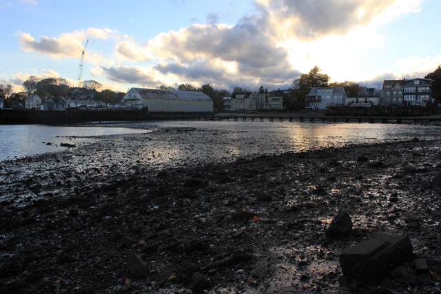 Fresh Eye Friday: Low Tide in Salem