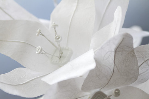 White-Paper-Lilies