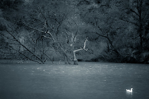 Laguna encantada (23)