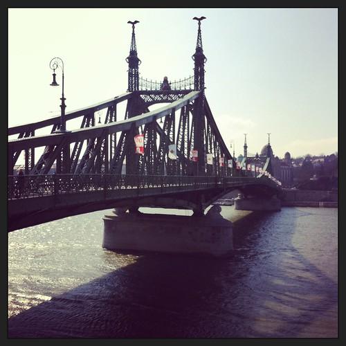 Bridge Across the Danube