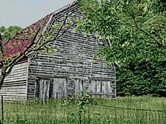 Webb Rd White barn