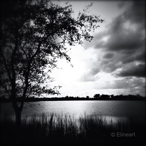 89:365 Tranquility by elineart