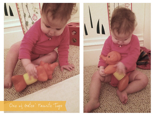 One of Gates' Favorite Toys: My Elephant Tuppertoy
