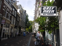 Grey Area, Amsterdam