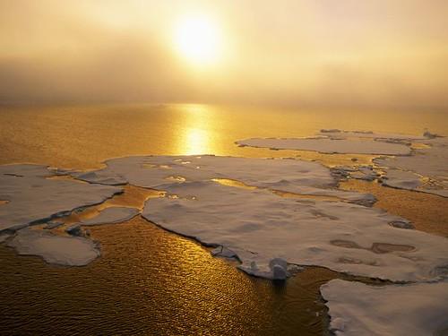 Nature: глобальное потепление оберется снижением производительности труда на 20%