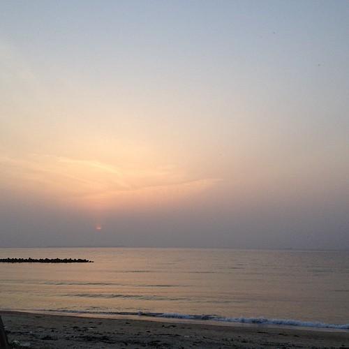 電車の時間的に日没までいられないの、ほんと残念だなぁ…と思ってたけど、黄砂でもう太陽見えないわ(´Д` ) ステキなカフェでした #nofilter