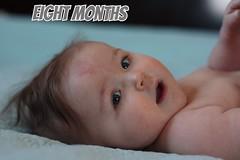 elise 8 months