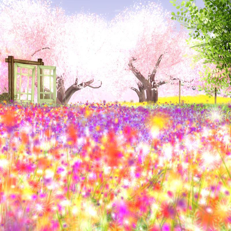 @Cherry Blossom - Spring!
