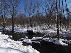 日, 2013-02-10 13:54 - Rockfeller Park Preserve