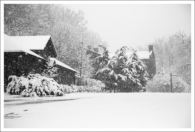 Spring Snow 2013-03-24 2