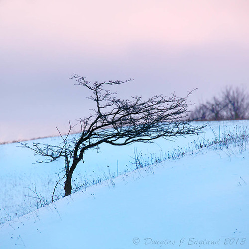 winter morning hues by D J England