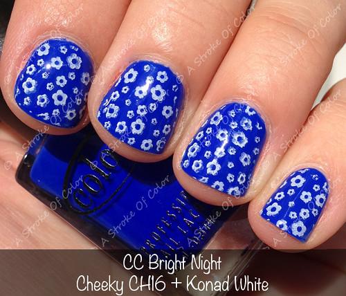 CC Bright Night (CH16)