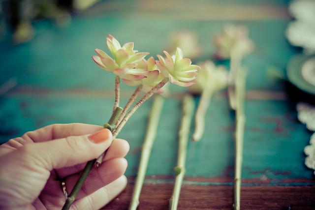 tutoriel bouquet de fleurs et plantes grasses