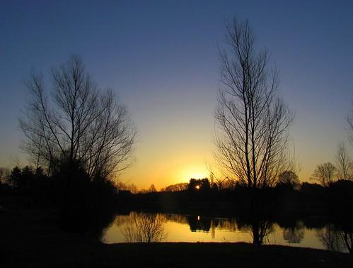 trees light lake nature sunrise reflections bomen natuur vijver zonsopgang mygearandme mygearandmepremium mygearandmebronze mygearandmesilver mygearandmegold mygearandmeplatinum mygearandmediamond fotodominic vigilantphotographersunite vpu2 vpu3 vpu4 vpu5 vpu6