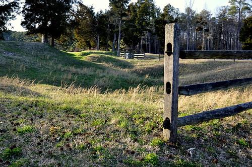 petersburg battle civilwar crater battlefield robertelee 1864
