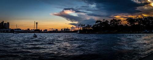 sunset harbour sydney bluespoint