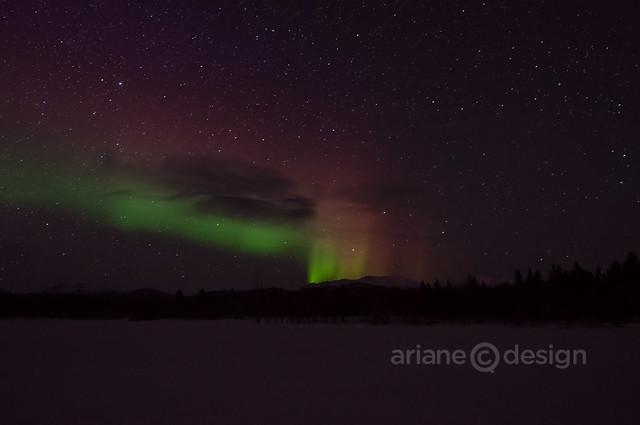 Yukon Aurora Borealis 4_7_2013-1