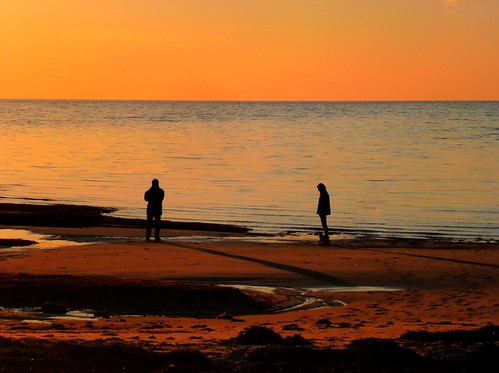 sunset rock harbor silhouettes cape cod mygearandme mygearandmepremium mygearandmebronze mygearandmesilver mygearandmegold mygearandmeplatinum mygearandmediamond