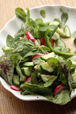 Lebanese salad, purslane, sumac, etc