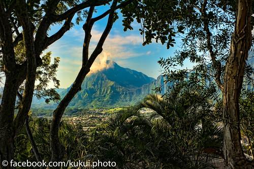 Pali Lookout and Ko'olau from Pu'u Ali'i #Hawaii #Photography