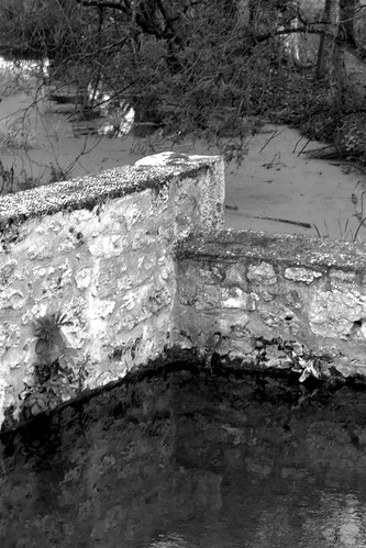 Source à Montguyard (24)