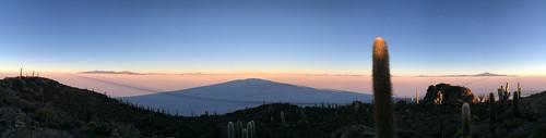 Le Salar d'Uyuni: la Isla Incahuasi