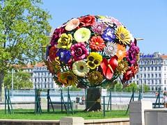 France, Fleurs, Arbres & Fruits.