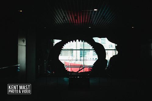 BaltimoreAquarium-2.jpg by kentmastdigital